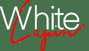 logo titre whitelapin, accompagnement digital